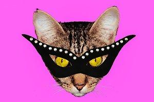 Fun Art Collage Masquerade cat