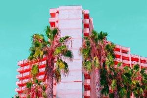 Palms and hotel. Stylish