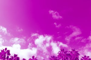 Tropical fashion pink minimal.