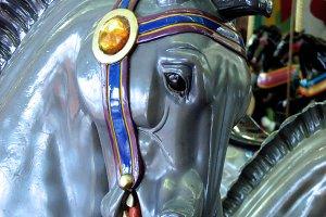 Grey Carousel Horse Portrait