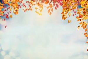 Autumn Nature frame , layout
