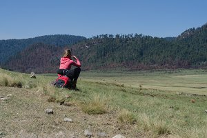 Rear view of female hiker sitting on rock