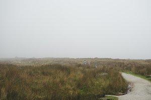 Misty Walk in Ireland