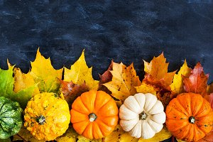 Autumnal colorful pumpkins