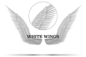 White open angel wings.