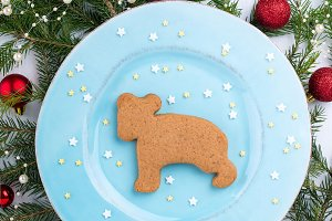 Christmas bear cookie