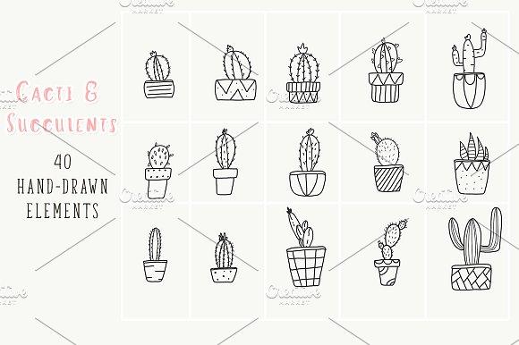 40 hand-drawn cactus plant elements