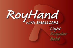 RoyHand Light