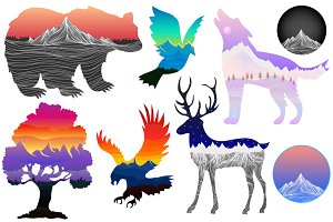 Super Nature Animal Collection