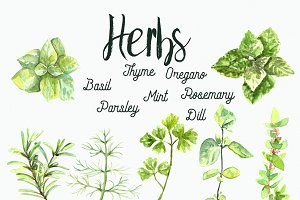 Watercolor Herbs Clip Art Set