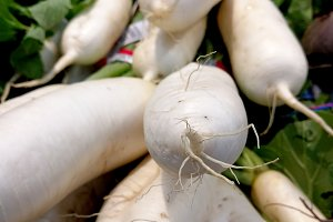 White turnips with roots