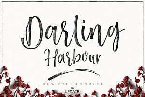 Darling Harbour Brush (NEW UPDATE)