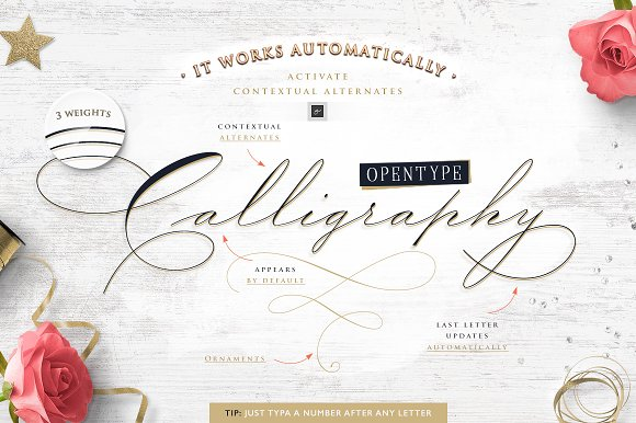 The Wedding Script Invitation Set Script Fonts Creative Market