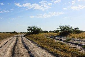 Dirt road Nxai Pan national park Botswana