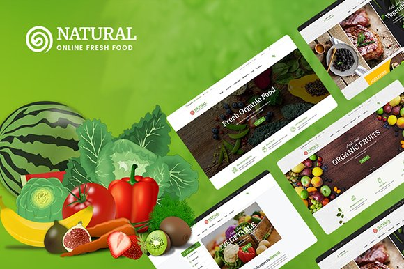 Natural Online Food WordPress Them