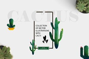 Illustrations with Cacti