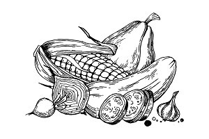 Still life vegetable engraving vector illustration