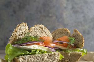 vegetarian sandwich with fresh ingre