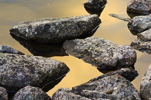 stones are beautifully laid out by nature in water