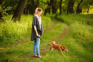 Walk girl and dog Shiba Inu