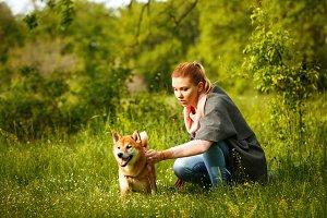 Girl stroking a dog Shiba Inu