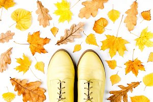 Autumn leaves and stylish shoes