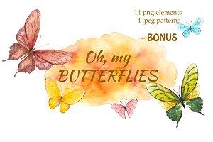 Oh, my butterflies.