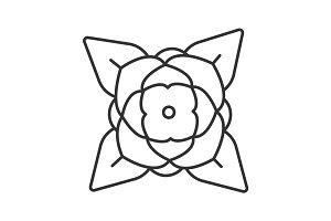 Blooming rose linear icon