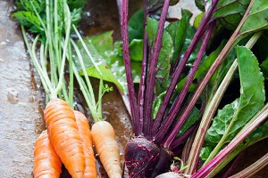 Beet and carrots