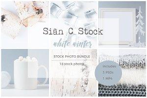 Winter White Stock Photo Bundle