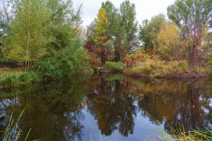beautiful autumn landscape with reflections in the water