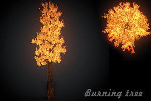 Burning tree big