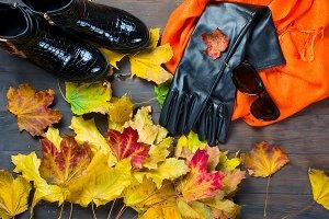 Collage Autumn feminine clothing