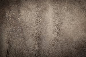 Skin of a rhinoceros.