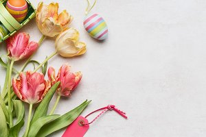 Easter background with fresh tulips