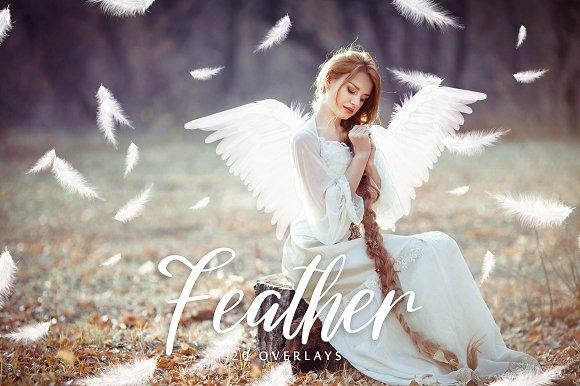 White Feather Overlays 20 Overlays
