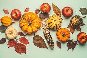Flat lay with pumpkin
