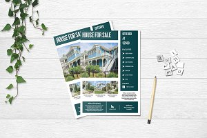 Real Estate Flyer Template V653