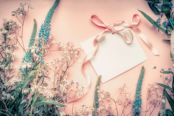 Arts & Entertainment Stock Photos: VICUSCHKA - Blank card with flowers and ribbon
