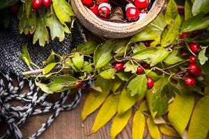 Autumn herbal tea