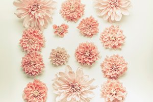 Pink pastel flowers flat lay
