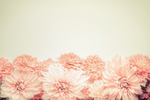 Pink pastel flowers border