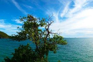 panorama island and sky