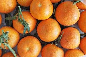 tangerine fruit food