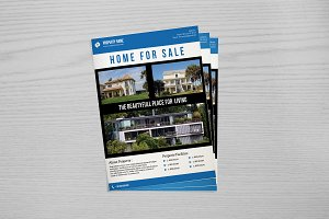 Real Estate Flyer Template V656