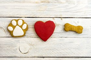 Dog's paw, red heart and bone. A dog loves bones.