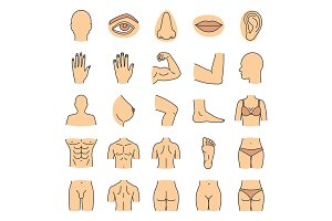 Human body parts color icons set