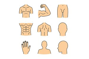 Male body parts color icons set