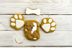 Spotted dog and paw prints. Sweet cakes.