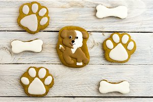 Spotted dog, paw prints and bones. Sweet cakes.